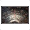 150203 0115 (Sunday, June 20th 2010)