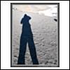 4748 (Thursday, October 4th 2007)