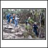3477 (Thursday, October 4th 2007)